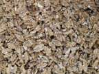Cerneaux de noix [Bio] - Au Bio Village - Quevaucamps