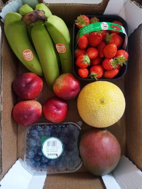 maraicher-legumes-le-panier-des-collines-leuze-en-hainaut-10