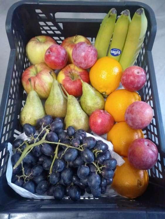 maraicher-legumes-le-panier-des-collines-leuze-en-hainaut-9